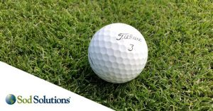 sod_solutions_logo_golfball